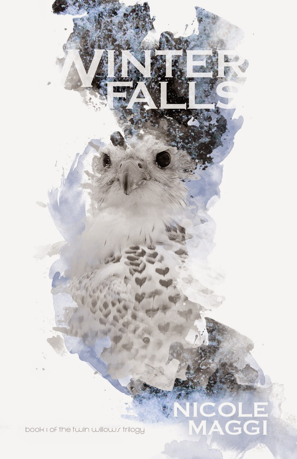 New Voice: Nicole Maggi on Winter Falls (Twin Willows Trilogy)